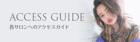 ACCESS GUIDE