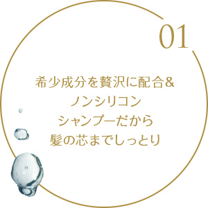 01.希少成分を贅沢に配合&ノンシリコンシャンプーだから髪の芯まで浸透する本物の品質